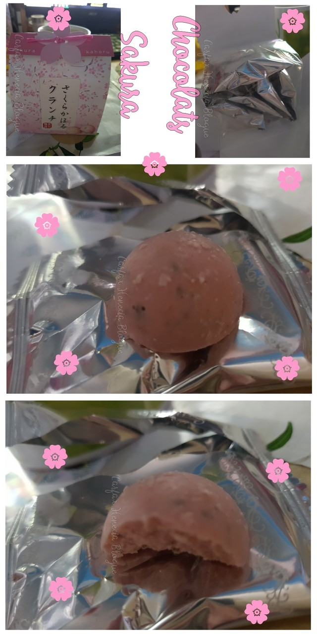 chocolats sakura