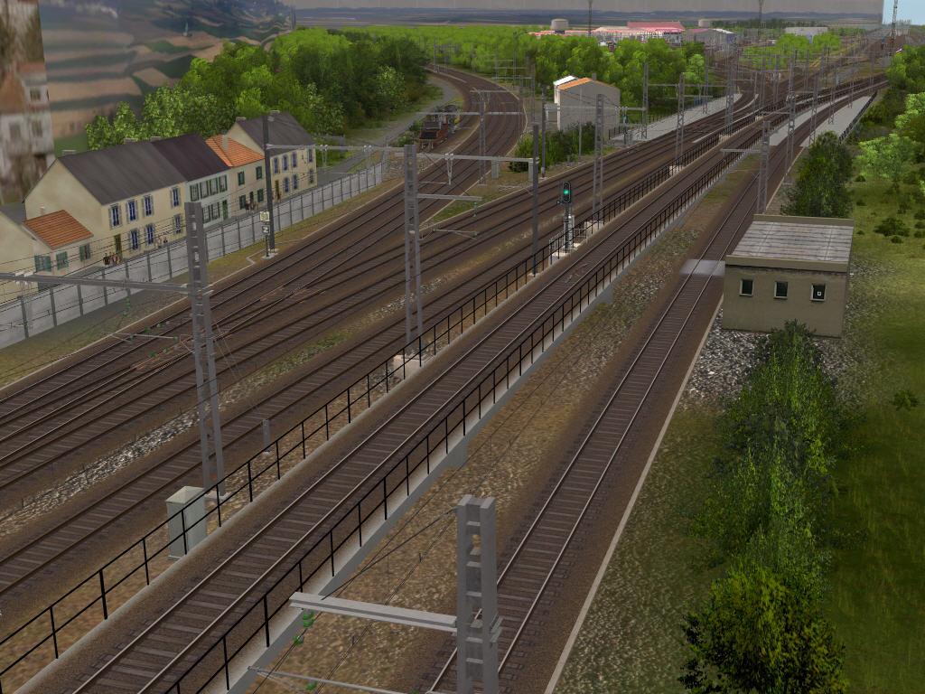Dijon 11