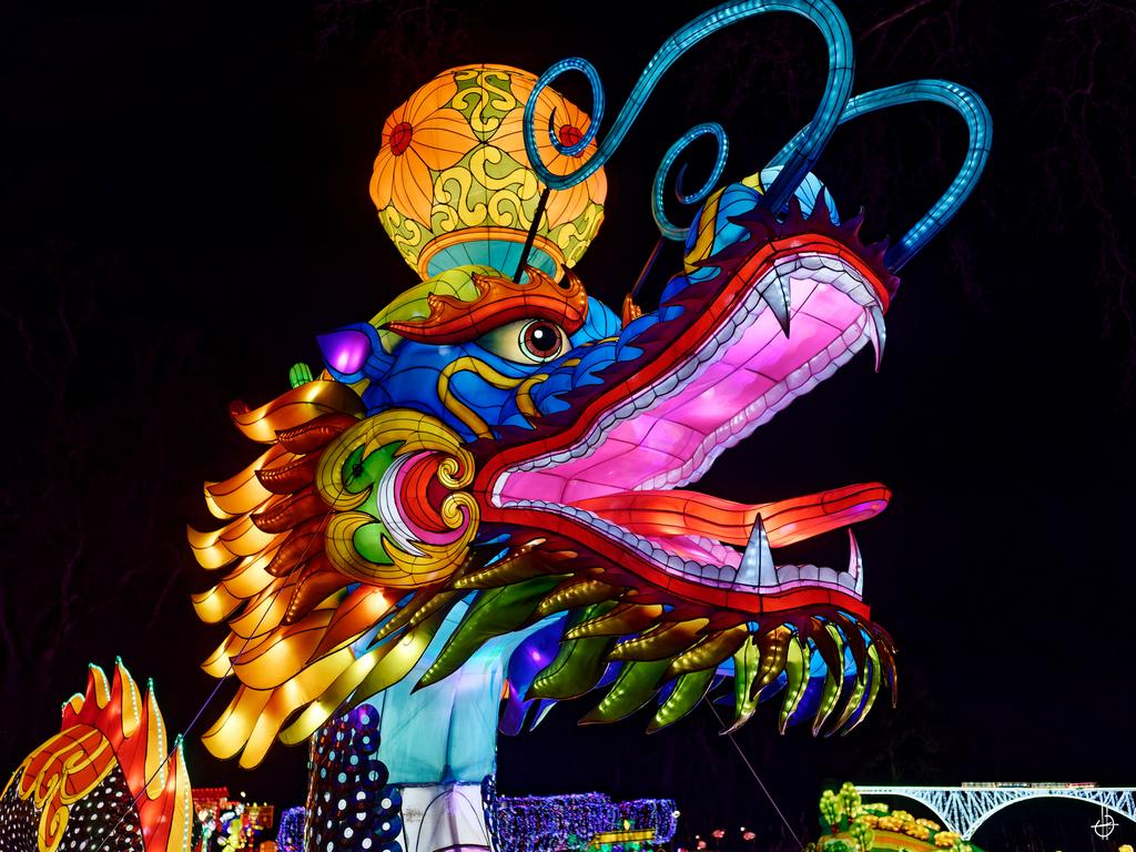 Le Dragon de Gaillac 19123008324123607916576408