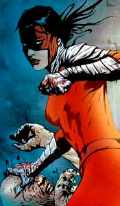 Kate S.K./Manhunter VIII