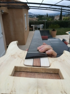 PROJET LUTHERIE - IMG_2017