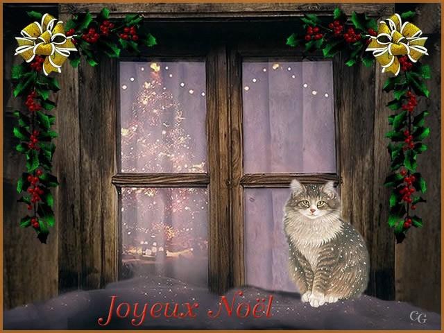 Occasions : Noël VbblJb-Noel-C102