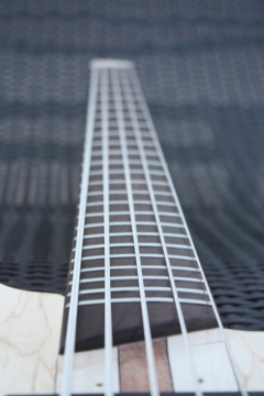 PROJET LUTHERIE - IMG_6257