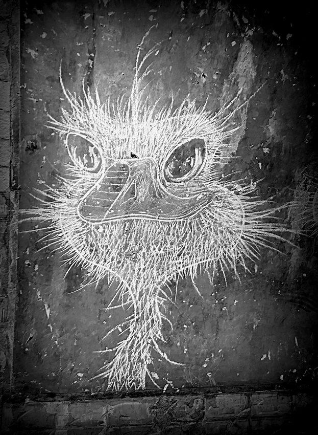 Graffe Paris subway 20071204101121718616916143