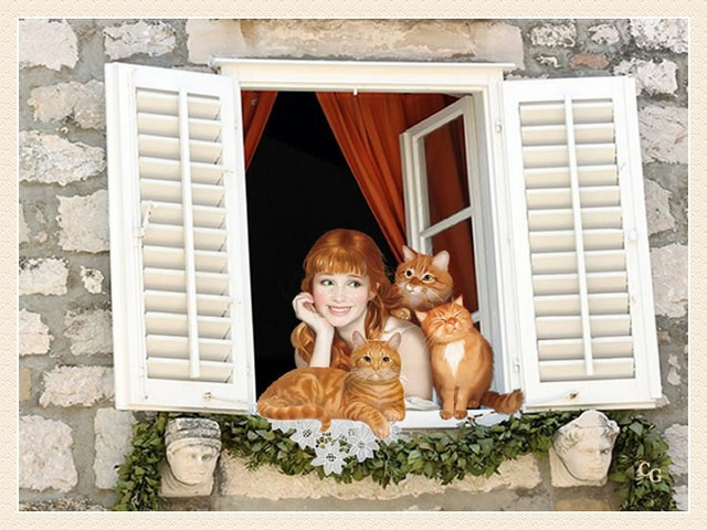 Animaux : Chats Y2uVJb-AA-C107