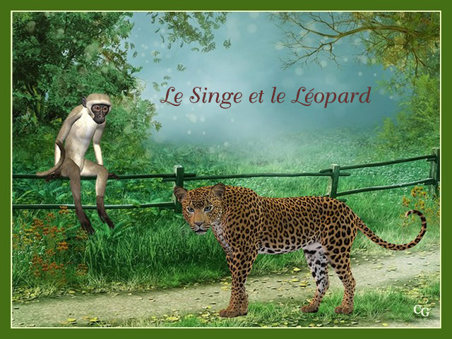 Le Singe et le Léopard 2007191016041858216926229