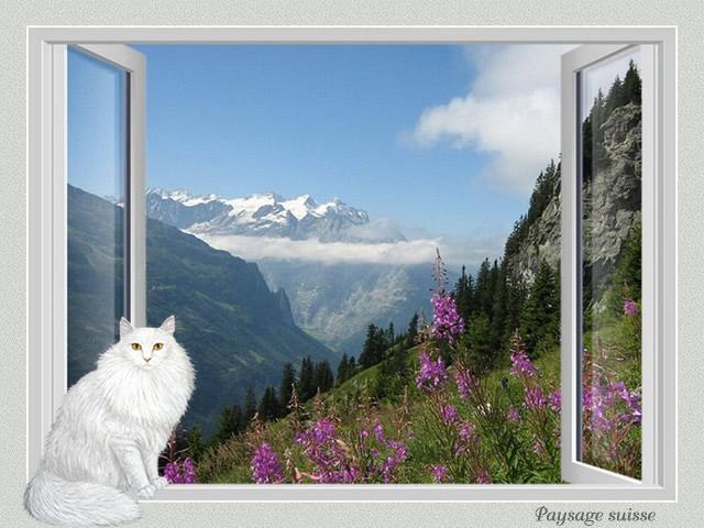 Fenêtre avec vue IV GN7bKb-CH4-101