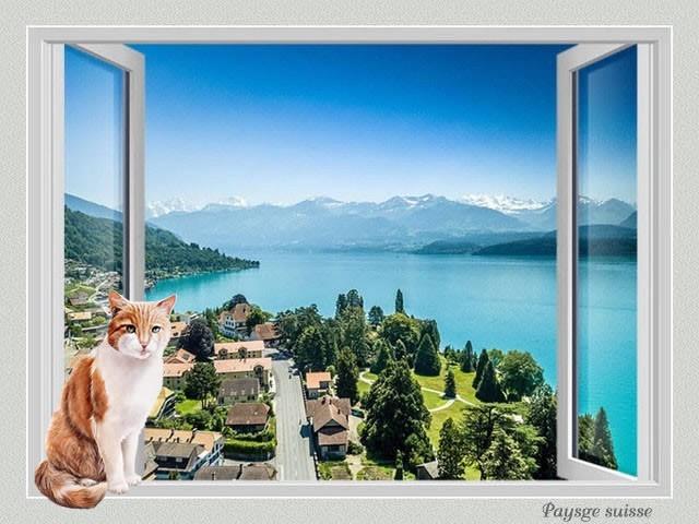 Fenêtre avec vue IV GN7bKb-CH4-102