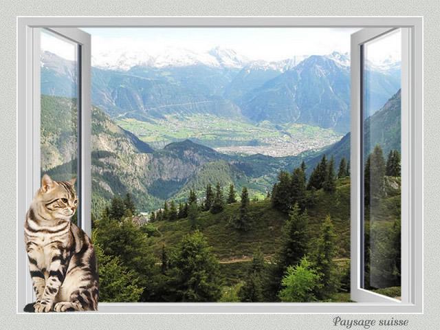 Fenêtre avec vue IV HN7bKb-CH4-108