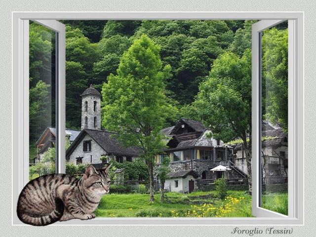 Fenêtre avec vue III VO5bKb-CH3-TI-301A