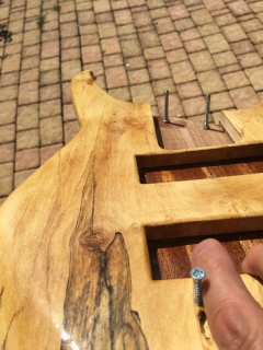 PROJET LUTHERIE - IMG_2591