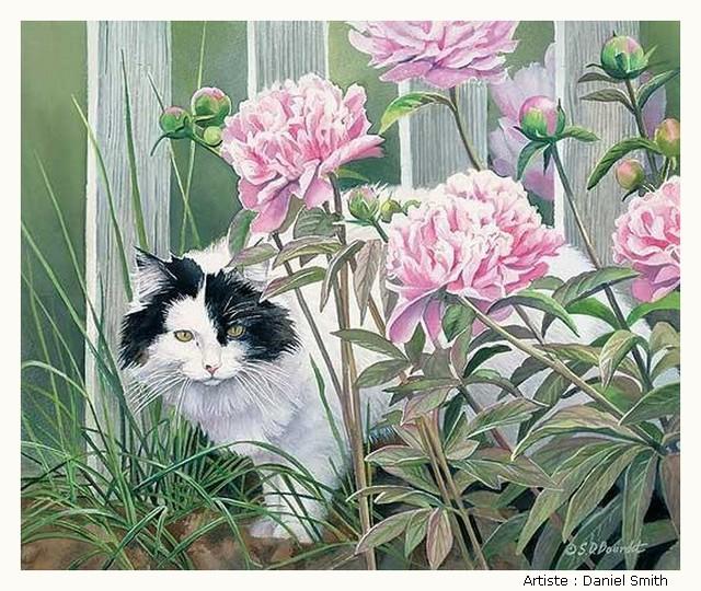 BOURDET Susan KH4BKb-Bourdet-502
