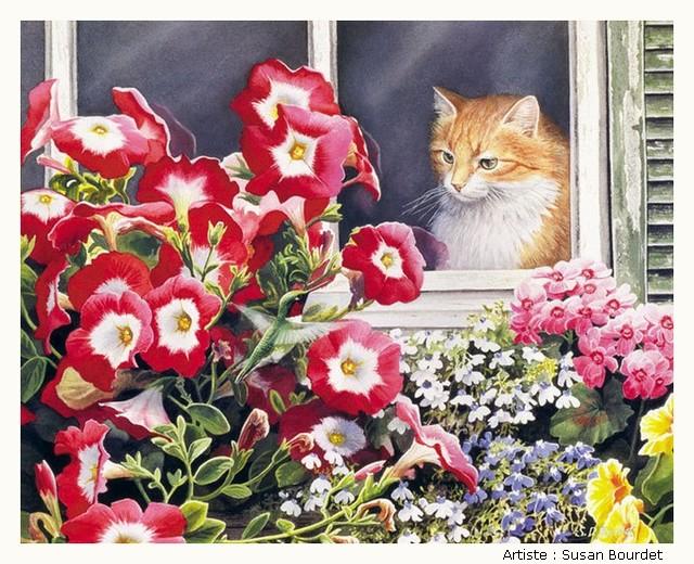 BOURDET Susan LH4BKb-Bourdet-506