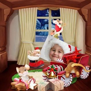 THE WINTER OF THE LITTLE MICE - lundi 23 novembre / monday november 23 th 20112310590519599817139694