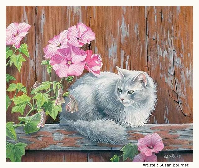 BOURDET Susan QDYIKb-Bourdet-501