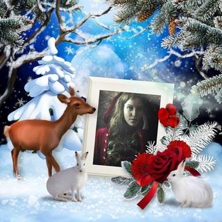 FULL MOON NIGHT IN WINTER - lundi 30 novembre / monday november 30th 20121111292719599817166623
