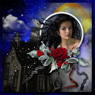 FULL MOON NIGHT IN WINTER - lundi 30 novembre / monday november 30th 20121111293919599817166630