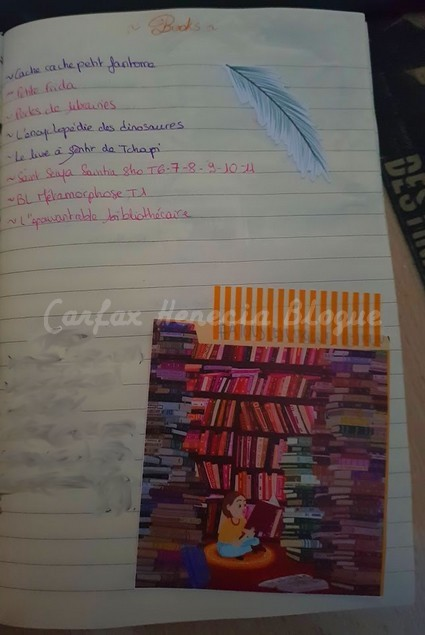 page livres