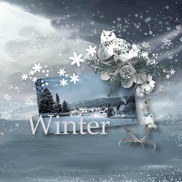 NUIT D'HIVER - jeudi 3 décembre / thursday december 3th 20121409293119599817170332