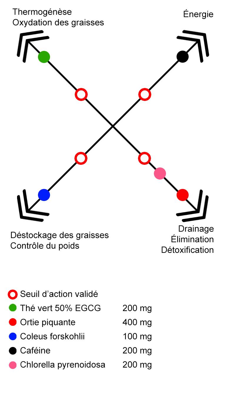graphique nutritionnelles et comparatifs avec le shred stimm SSP.png