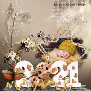 THE YEAR OF THE BUFFALO - jeudi 21 janvier / thursday january 21th 21012111430719599817223010