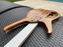 PROJET LUTHERIE - IMG_3198
