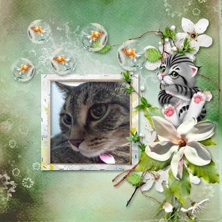 kittyscrap_KittyWorld_pageSamastie2