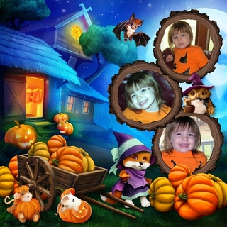 HALLOWEEN WITH THE FRIENDS OF THE FOREST - jeudi 14 octobre / thursday october 14th 21101508330719599817616719