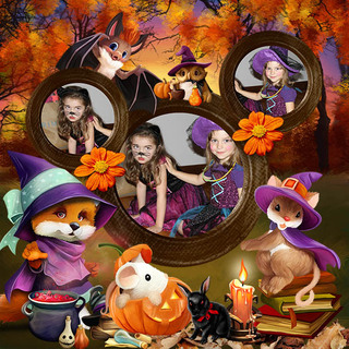 HALLOWEEN WITH THE FRIENDS OF THE FOREST - jeudi 14 octobre / thursday october 14th 21101508332119599817616724
